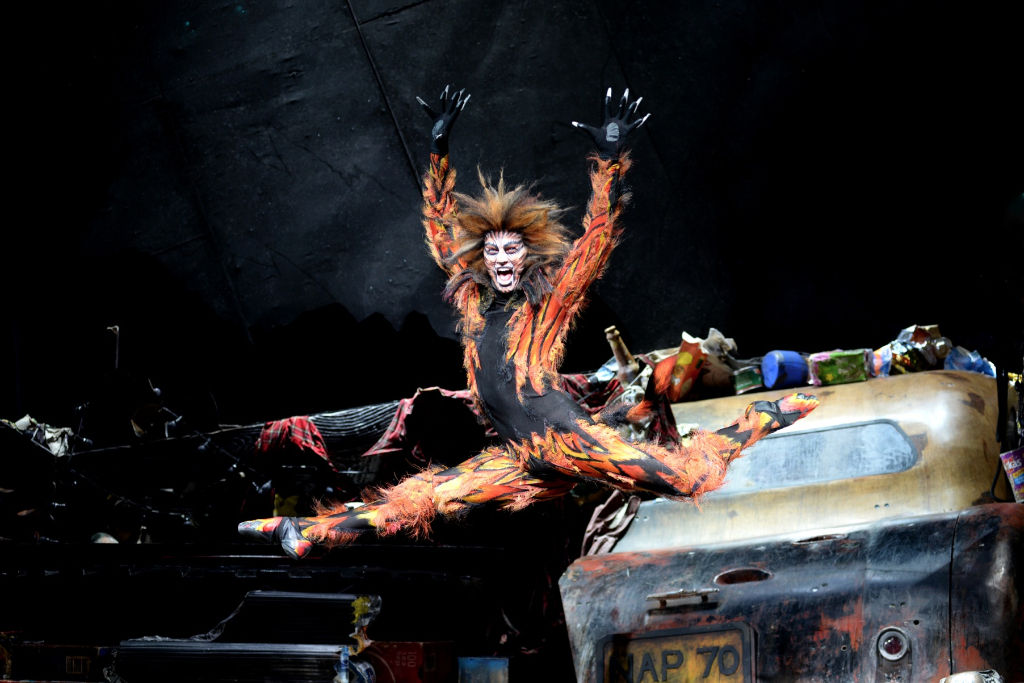 Macavity the Cat, image courtesy of Cats the Musical