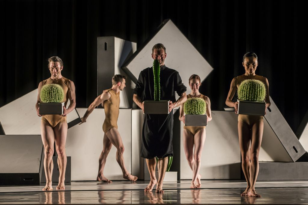 Sydney Dance Company Cacti