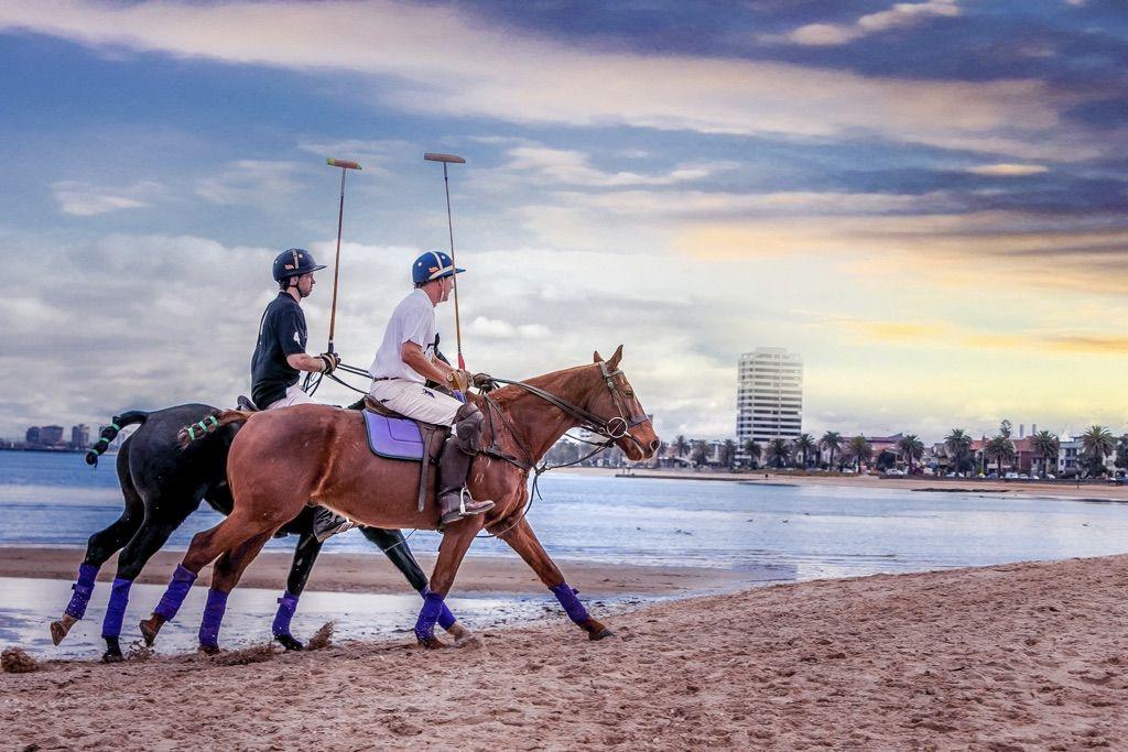 Twilight Beach Polo 3