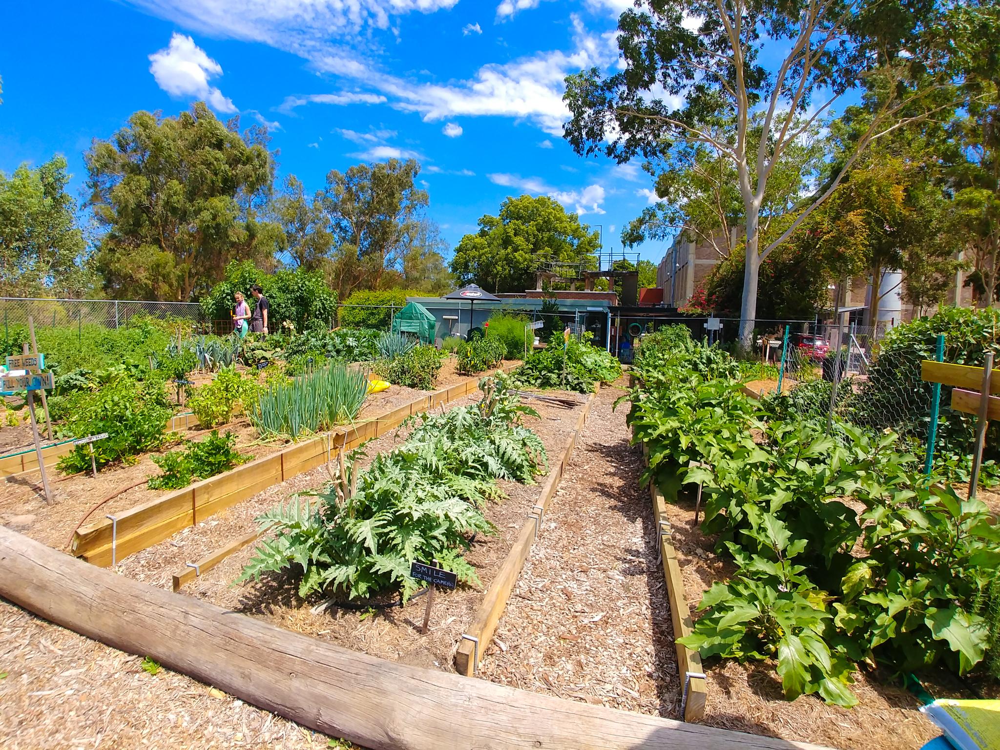 The CPAC produce garden