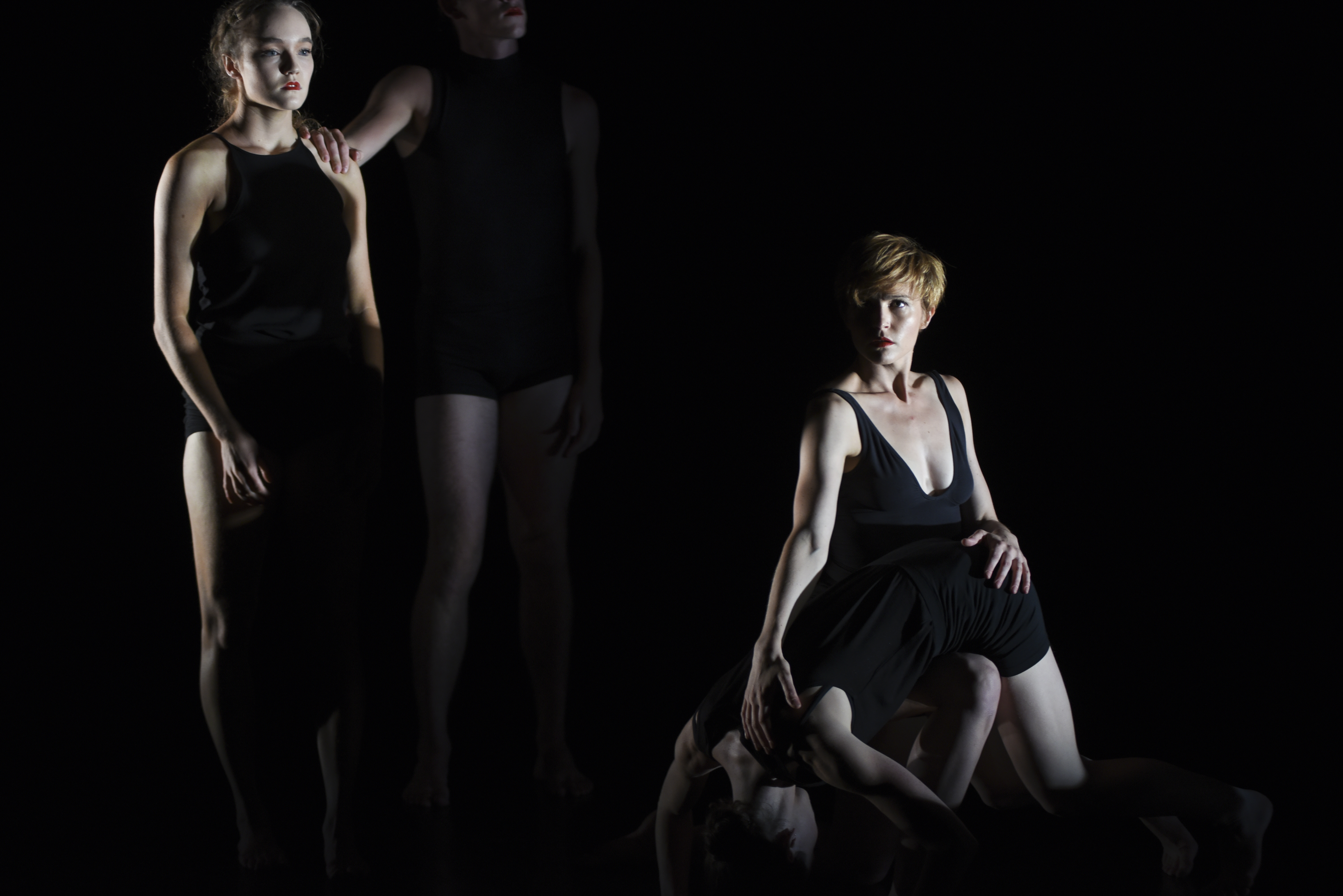 WILDEBEEST - Form Dance Projects