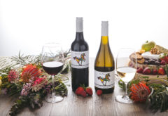 Gwyn Olsen Field Blends Wine