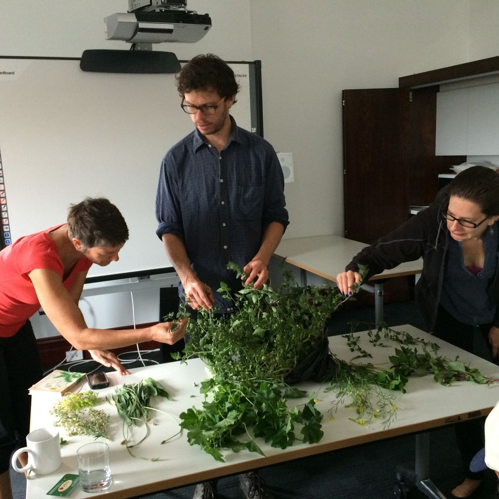 Theresa (on right) getting up close and personal with some weeds - photo courtesy North Melbourne Library