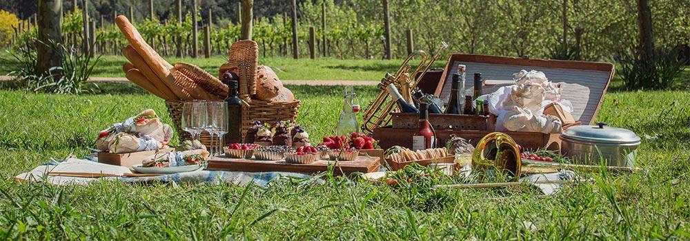buy-tickets-peninsula-picnic